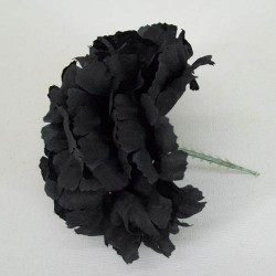 Short Stem Carnation Black - C031 C2