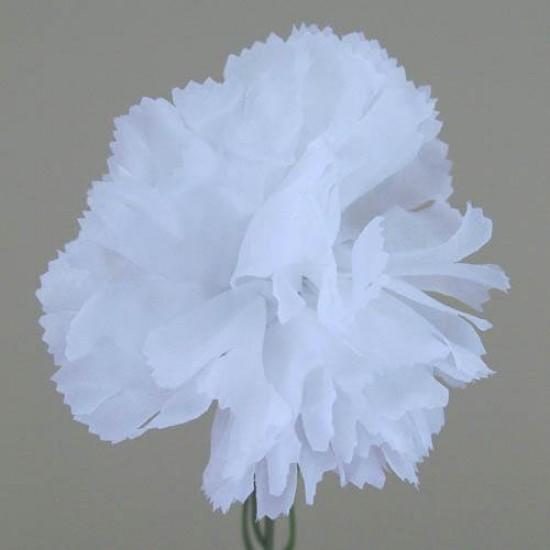 Silk Carnations White - C001i A4
