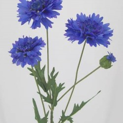 Artificial Silk Cornflowers Large Blue - C019 A4