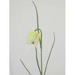 Artificial Fritillaria Cream and Pale Green - F007 HH2