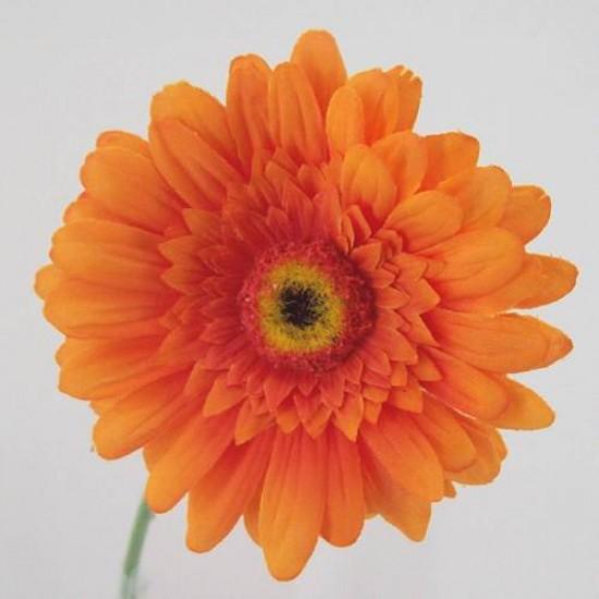 Silk Gerbera Orange - G020 F2