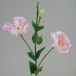 Silk Double Lisianthus Pink Blush - L079 KK4