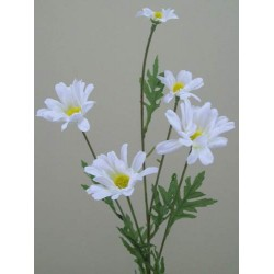 Silk Daisy Stem - D045 C2