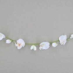 Phalaenopsis Orchid Garland Ivory - O011 BX1