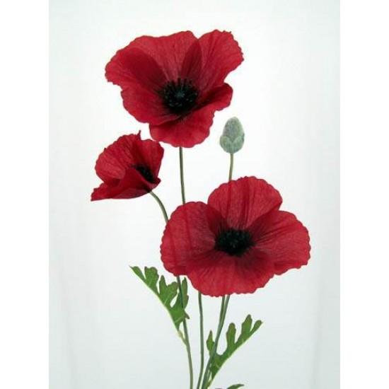 Silk Poppies Dark Red and Black - P006 J3