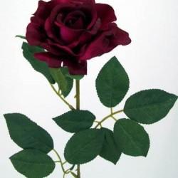 Premium Roses Burgundy - R014d L3