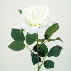 Premium Roses Ivory Cream - R014a L3