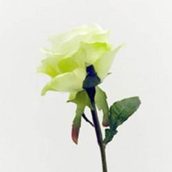 Prize Rose Green - R052 N3