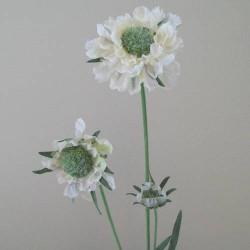 Silk Scabious Flowers Cream | Artificial Scabiosa - S060 Q2