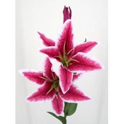 Silk Stargazer Lily Hot Pink - L013 G1