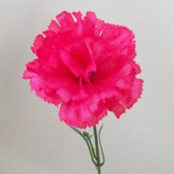Silk Carnations Hot Pink - C001k  A4