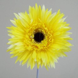 Silk Spider Gerbera Yellow - G088 BX15