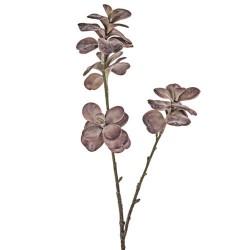 Artificial Succulents Kalanchoe Burgundy - KAL001 I2