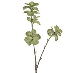 Artificial Succulents Kalanchoe Green - KAL003 I2