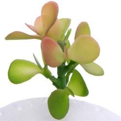 Artificial Succulents Jade Plants Green Red 5.5cm - SUC018 GS3C