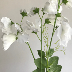 Long Artificial Sweet Peas Stem Ivory - S120 R1