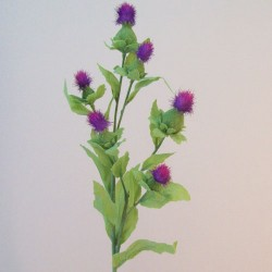 Thistle Spray Pink Purple - T005 R3