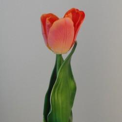 Silk Parrot Tulip Orange  - T036 Q2