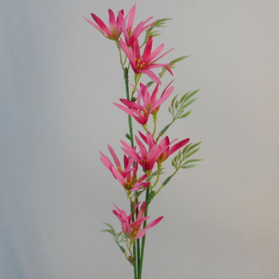 Artificial Tweedia Pink - T021 H2