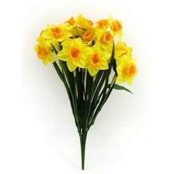 Two Tone Daffodil Bunch - D002 C1