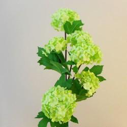 Silk Viburnum | Snowball Flowers Green - V004 I1