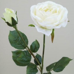 Artificial Vintage Roses Cream - R077 O3