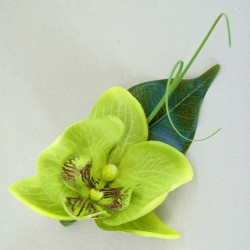 Lime Green Silk Orchid Boutonniere Buttonhole - OBH004