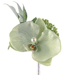 Pearl Wedding Orchid Corsage or Buttonhole Sage Green - PEA012 FF3