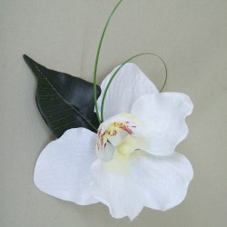 Ivory Silk Orchid Boutonniere Buttonhole - OBH008